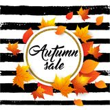 Banner for seasonal fall sale. Autumn vector background with orange maple leaves. Abstract golden banner for seasonal fall sale Royalty Free Illustration
