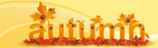 Banner for seasons autumn. With orange background Stock Photos