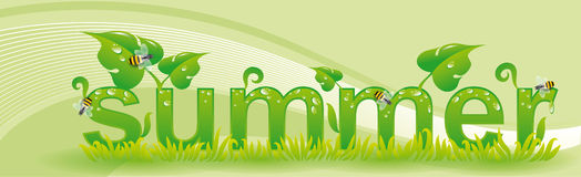 Banner for seasons summer. With green background Stock Images