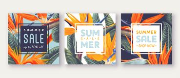 Summer sale banner with tropical flowers - Strelitzia, on background with bright colours. Can be used as greeting, invitation card, template design, cover royalty free illustration
