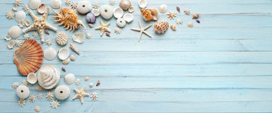 Summer Shells Blue Wood Banner Background. Shells on a light blue wood background in a banner format
