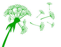 Banner with dandelion. Banner with the silhouette of a flying dandelion vector illustration