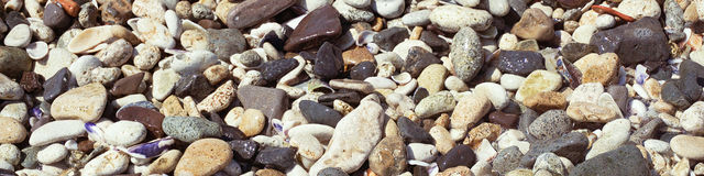 Banner of small sea pebbles Stock Image