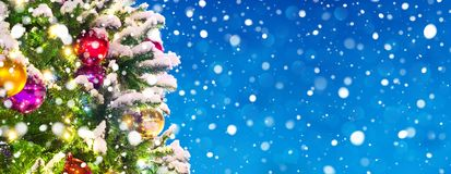Banner with snowy christmas. Banner with christmas tree and falling snow background with copy space royalty free stock photography