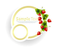 Banner with strawberries garnish Stock Photography