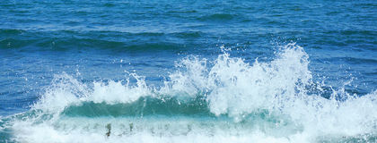 Banner of strong foamy sea wave Stock Image
