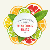 Banner with stylized citrus fruit and splashes Stock Images