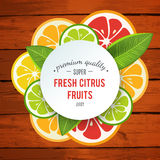 Banner with stylized citrus fruit and splashes Stock Image