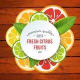 Banner with stylized citrus fruit and splashes Stock Image