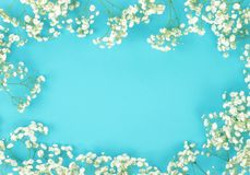 banner tła kwiaty form różowego spiralę trochę bukiet ramy granica biały łyszczec kwiat na mlecznoniebieskim tle obrazy stock