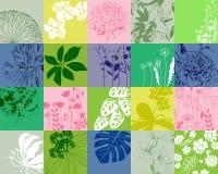 banner tła kwiaty form różowego spiralę trochę również zwrócić corel ilustracji wektora Obrazy Stock