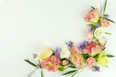 banner tła kwiaty form różowego spiralę trochę Ramowy wianek zielone eukaliptus gałąź, różowe róże i purpura kwiaty na białym tle Obraz Stock