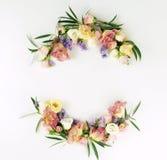 banner tła kwiaty form różowego spiralę trochę Ramowy wianek zielone eukaliptus gałąź, różowe róże i purpura kwiaty na białym tle Zdjęcie Royalty Free