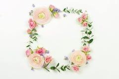 banner tła kwiaty form różowego spiralę trochę Wianek rama robić jasnoróżowi róża kwiaty i eukaliptus gałąź Fotografia Royalty Free