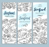Banner template hand drawn seafood. Vector banner template hand drawn seafood design with mussel, fish salmon, shrimp. Lobster, squid, octopus, scallop, lobster Stock Images
