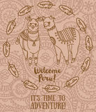 Banner for travel and adventure with cute doodle alapacas and feather decoration Stock Images