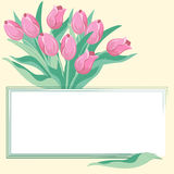 Banner with tulips. Vector illustartion Stock Photography