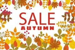 Banner voor Autumn Sale, achtergrond met dalende bladeren, geel, oranje, bruin, daling, het van letters voorzien, malplaatje voor royalty-vrije illustratie