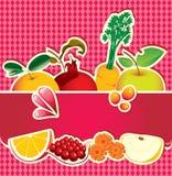 Banner voor vruchtesap Royalty-vrije Stock Afbeeldingen