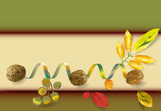 Banner with walnuts, acorn and colorful leaves. Background in autumn colors with nuts and shiny ribbon Royalty Free Stock Photography