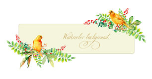 Banner with watercolor yellow bird and some leaves, berries. Royalty Free Stock Photo