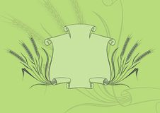 Banner with wheat green. Scroll banner and wheat on green background Stock Images