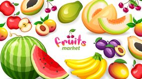 Free Banner With Different Tropical Fruits Isolated On White Background, Vector Illustration In Flat Style Royalty Free Stock Image - 183456356
