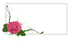 Banner With Rose Royalty Free Stock Photography