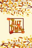 Banner with the words autumn. Autumn leaves background.  Stock Images