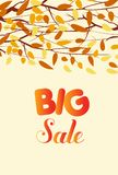 Banner with the words big sale. Autumn leaves background.  Royalty Free Stock Images
