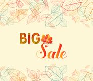 Banner with the words big sale. Autumn leaves background.  Stock Photography