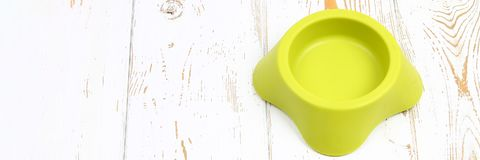 Banner. Yellow-green empty plastic bowl for pets on a white wooden floor. royalty free stock images
