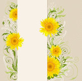 Banner with yellow sunflowers Royalty Free Stock Photos