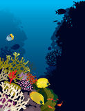 Bannerfish i koraller Arkivbild