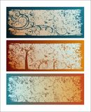 Banners. Three colored different design banners with grunge texture Royalty Free Stock Photography