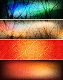 Banners Royalty Free Stock Photos