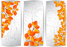 Banners with autumn leaves. Illustration of banners with colorful autumn leaves and ornamental background Stock Image