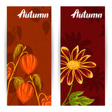 Banners with autumn leaves and plants. Design for advertising booklets, banners, flayers, cards Royalty Free Stock Image