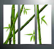 Banners with bamboo Stock Image