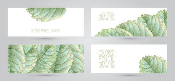 Banners with beautiful spring leaves Stock Image