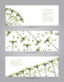 Banners with beautiful spring plants Royalty Free Stock Photos