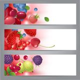 Banners with berries Stock Photography