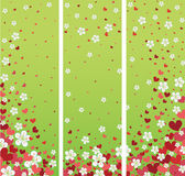 Banners with cherry flowers and hearts.Spring desi Stock Photography