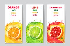 Banners with citrus fruit juice and splashes. Grapefruit, lime and orange drink package design.  stock illustration