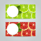 Banners with citrus fruits Stock Images
