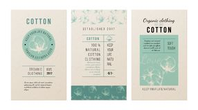 Cotton banners in vintage style. 3 banners for clothing trademark in vintage style with hand drawn cotton plant. Vector illustration Stock Photography