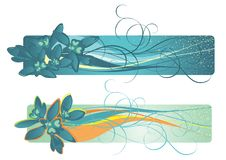 Banners contains snowdrops and curved lines. Stock Images