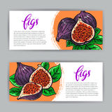 Banners of delicious figs Royalty Free Stock Images