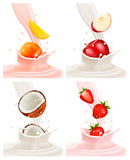 Banners with delicious fruit landing in a milk splash. Royalty Free Stock Images