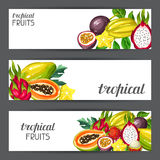 Banners with exotic tropical fruits. Illustration of asian plants Stock Photography